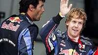 Großer Preis von Brasilien: Sieg für Vettel…
