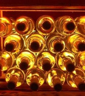 Weinregal: Alkohol schwächt das Immunsystem (Foto: pixelio.de, M. Ottersbach)