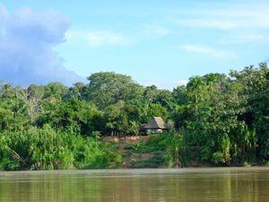 Amazonas: das Bewusstsein für den Regenwald steigt (Foto: pixelio.de/rebel)