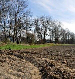 Ackerfläche: Böden sind für immer verändert (Foto: pixelio.de, berggeist007)