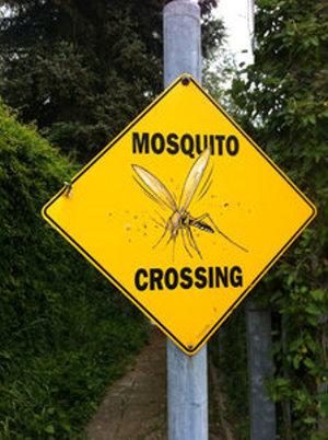 Fälle von arzneimittelresistenter Malaria nehmen zu – Hotspot Südostasien: Sofortige sowie drastische Maßnahmen gefordert