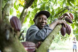 Fairtrade-Produkte ziehen Deutsche magisch an – Umsatz 2013 um 23 Prozent auf mehr als 650 Mio. Euro angestiegen