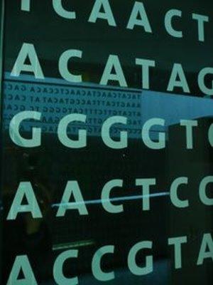 Autisten: Geringeres Krebsrisiko genetisch bedingt – Krebsrisiko bei Kindern unter 14 Jahren sogar um 94 Prozent niedriger